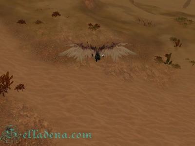 Полет над пустыней Эракус