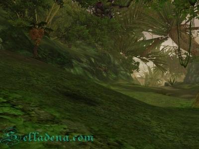 Aion лес Интердрики