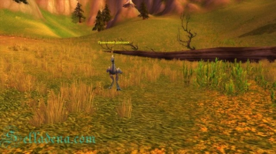 Cкриншоты World of Warcraft_36