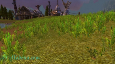 Cкриншоты World of Warcraft_41