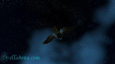 WoW  на фоне ночного неба