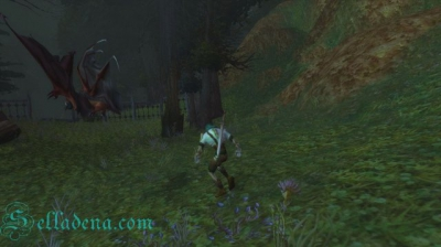 Cкриншоты World of Warcraft_89