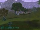 Aion юг леса Тольбас