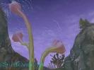 Aion необычные растения