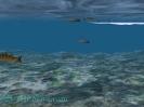 Aion подводный мир