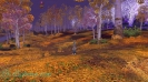 Cкриншоты World of Warcraft_149