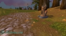 Cкриншоты World of Warcraft_40